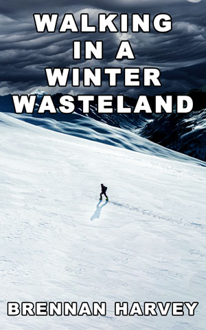 Walking in a Winter Wasteland by Brennan Harvey